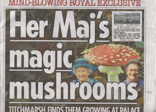 The Queen's magic mushrooms The Sun newspaper