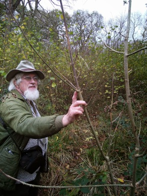 Oliver Rackham Christine Reid Natural England Hayley Wood