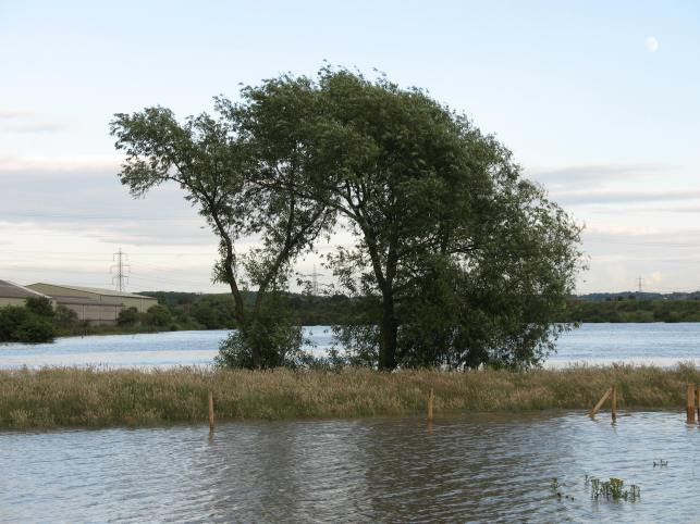River Rother flood June 2007