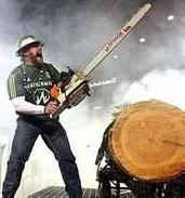 timber-joey