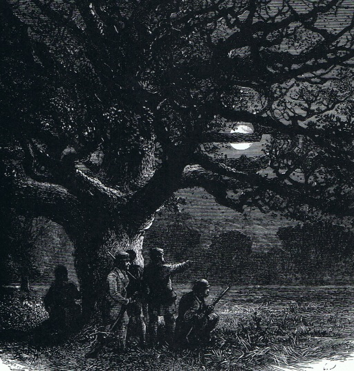 figure-5-the-watch-oak-at-windsor-great-park-in-the-1870s